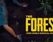 The Forest – Koop Modus angekündigt
