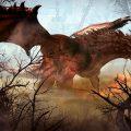 Black Desert Online – Drieghan-Erweiterung erscheint am 14. November